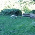 picnic table in yard